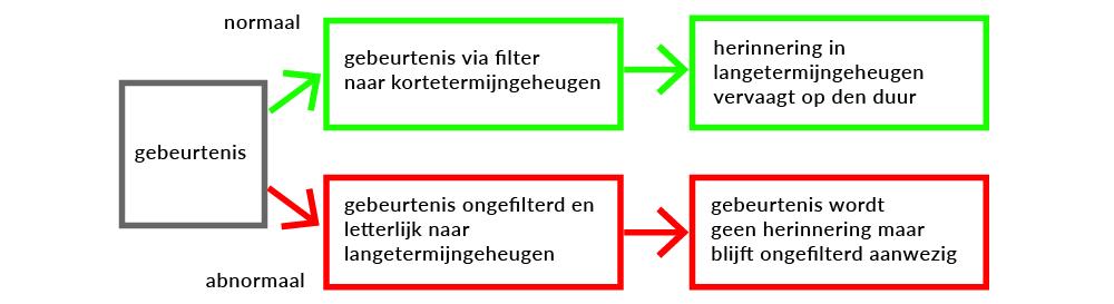 EMDR schema